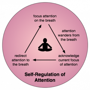 Mindfulness Meditation Process